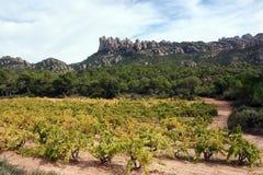 Multi-peaked mountain, Montserrat Stock Photography