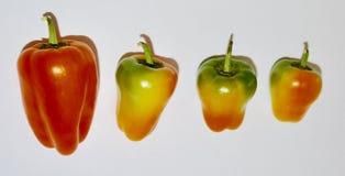 Multi peperoni di colore fotografia stock