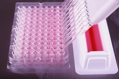 Multi-pipette being used to fill the wells Royalty Free Stock Photo