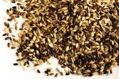 Multi preparato del riso del granulo isolato su bianco Fotografia Stock Libera da Diritti