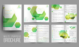 Multi-Purpose Eight Pages Brochure Set. Royalty Free Stock Photo