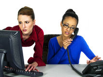 Multi-racial office girls royalty free stock photos