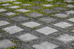 Multi-square rectangular walkway slabs Put together alternating with the grass. Closeup Multi-square rectangular walkway slabs Put together alternating with the royalty free stock photos
