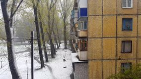 Multi-storey building. Snow and trees. stock video