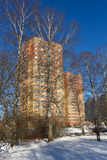 Multi-storey house for birch. For tree of the birch, the high-rise house, winter Royalty Free Stock Images