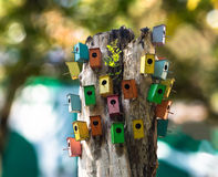 Multicavity bird house. stock photography