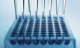 Multichannel pipette Stock Photo