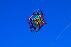 Multicolor змей стоковое фото