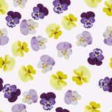 Multicolor anemone flowers seamless pattern. Multicolor hand drawn anemone flowers seamless pattern royalty free illustration
