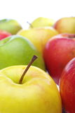 Multicolor apples Stock Images