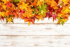 Multicolor autumn leaves over wooden background Stock Photo