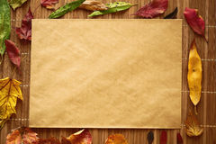 Multicolor autumn leaves on a wooden background Stock Images