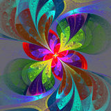 Multicolor beautiful fractal flower on gray background. Royalty Free Stock Photos