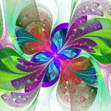 Multicolor beautiful fractal flower on white background. Stock Image