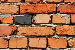 Multicolor brick wall Royalty Free Stock Image