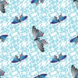 Multicolor Butterflies. Hand drawn doodle. Seamless pattern. Multicolor Butterfly on blue background. Hand drawn doodle. Seamless pattern Royalty Free Stock Image