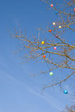 Multicolor christmas toys deciduous tree blue sky Stock Image