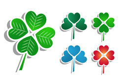 Multicolor clovers Stock Photos