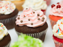 Multicolor cupcakes Royalty Free Stock Images