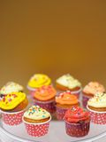 Multicolor cupcakes Royalty Free Stock Photo