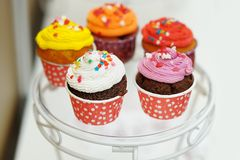 Multicolor cupcakes Stock Photo