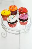 Multicolor cupcakes Stock Image