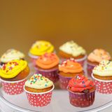 Multicolor cupcakes Royalty Free Stock Photography