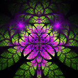 Multicolor fabulous fractal pattern. Collectiont - tree foliage. Royalty Free Stock Images