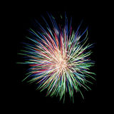 Multicolor firework. On black background royalty free stock images