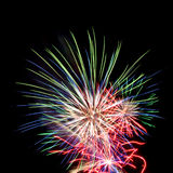 Multicolor fireworks. On black background Royalty Free Stock Image
