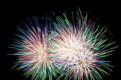 Multicolor fireworks. On black background Stock Photos