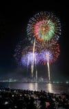 Multicolor fireworks night scene Stock Photos