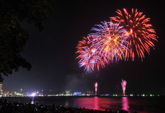 Multicolor fireworks night scene Royalty Free Stock Photo