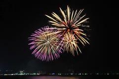 Multicolor fireworks night scene Stock Images