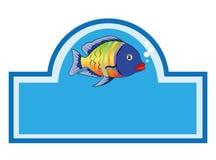 Multicolor fish Stock Image