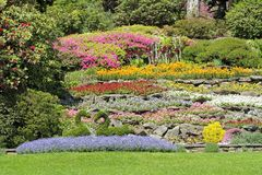 Multicolor flower beds on hillside Stock Photos