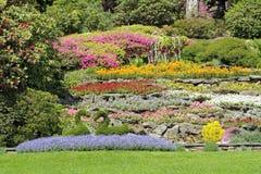 Multicolor flower beds on hillside Stock Photos