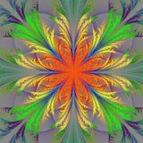 Multicolor fractal kwiat Kolekcja - mroźny wzór ilustracji