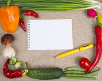 Multicolor frame of vegetables Stock Photography