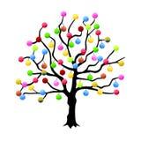 Multicolor fruit tree Stock Photo