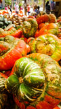 Multicolor gourds on wooden table at farmer's market. Royalty Free Stock Images