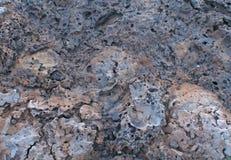 Multicolor Lava Tufa Rock Background Stock Image