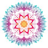 Multicolor mandala with flower and plant motifs royalty free illustration