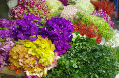 Multicolor orchid Bundle. In the flower market, bangkok, Thailand Royalty Free Stock Image