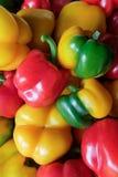 Multicolor pieprz Zdjęcia Stock