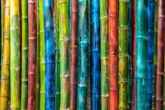 Multicolor pintado de bambú fotografía de archivo libre de regalías