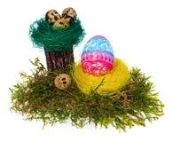 Multicolor pintado a mano de los huevos de Pascua en la jerarquía del pájaro, musgo del bosque, Imagen de archivo