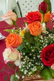 Multicolor roses in the foreground. Arrangement of multicolor roses in the foreground with pastel shades stock images