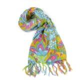 multicolor scarf arkivbild