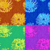 Multicolor set of patterns with drawings and gerberas Royalty Free Stock Image